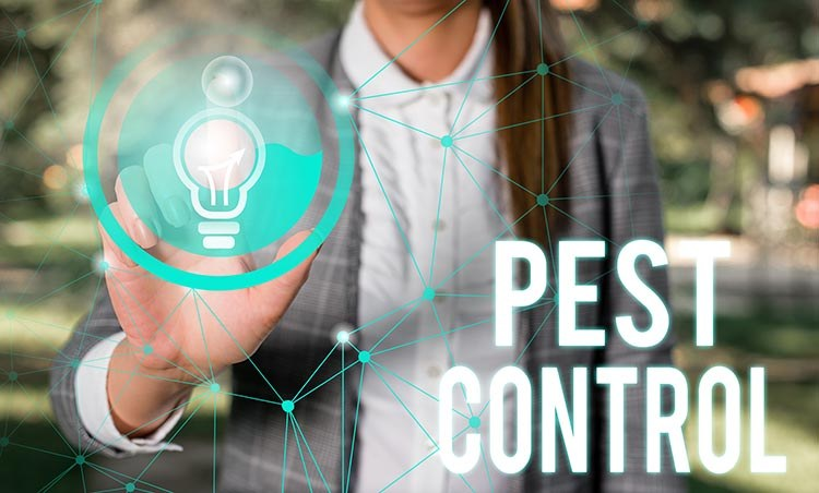 women pressing technology icon with 'pest control' written across the image